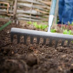 soil_1