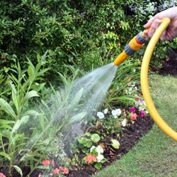 watering_3